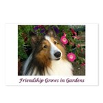 Friendship Grows In Gardens Postcards (Package of