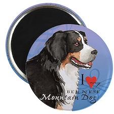 "Bernese Mountain Dog 2.25"" Magnet (10 pack)"
