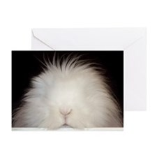 Bunny Poppin' In Greeting Cards (Pk of 10)