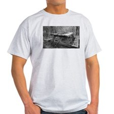 The Picnic is Long Over T-Shirt