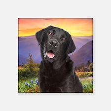 """Labrador Meadow Square Sticker 3"""" x 3"""""""