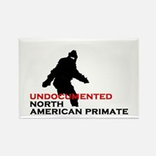 Undocumented North American Primate Rectangle Magn