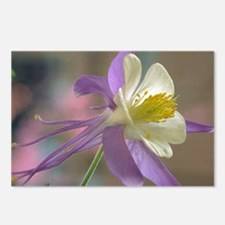 Purple and White Columbine Postcards (Package of 8