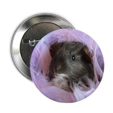 baby cavy Button