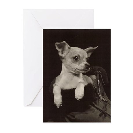 Chihuahua Vintage Photo Greeting Cards (Pk of 10)