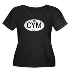 Car code Wales - White T