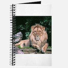Lazy Lion Journal