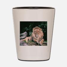 Lazy Lion Shot Glass