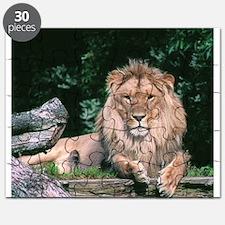 Lazy Lion Puzzle