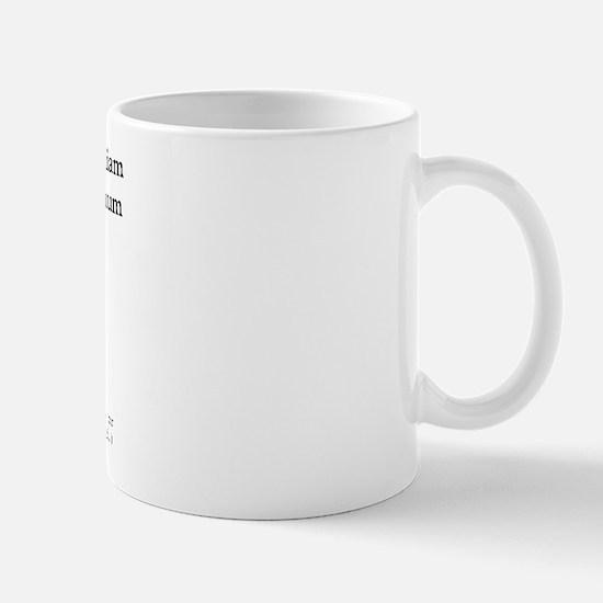 I have a catapult... Mug