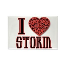 Storm Rectangle Magnet
