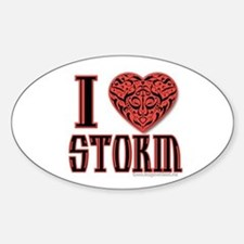 Storm Oval Decal
