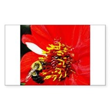 Bee on Red and White Dahlia Rectangle Decal