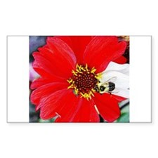 Bee on Red and White Flower Rectangle Decal