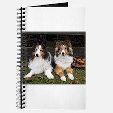 Barn Dogs Journal