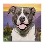Pit Bull Meadow Tile Coaster