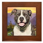 Pit Bull Meadow Framed Tile