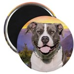 Pit Bull Meadow Magnet