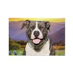 Pit Bull Meadow Rectangle Magnet