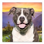Pit Bull Meadow Square Car Magnet 3