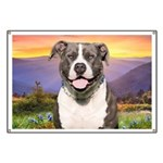 Pit Bull Meadow Banner