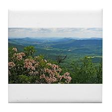 Pennsylvania Mountain Laurel Scene Tile Coaster