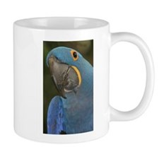 Hyacinth Macaw Small Mugs