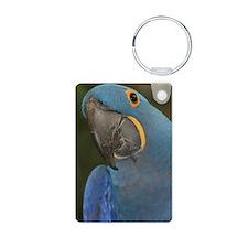 Hyacinth Macaw Keychains