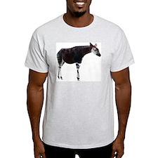 Okapi Ash Grey T-Shirt