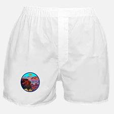 THE DRIFTER Boxer Shorts