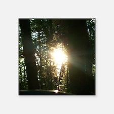 """Funny Sun web Square Sticker 3"""" x 3"""""""