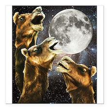 "Three Camel Moon Square Car Magnet 3"" x 3"""
