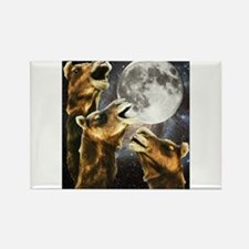 Three Camel Moon Rectangle Magnet