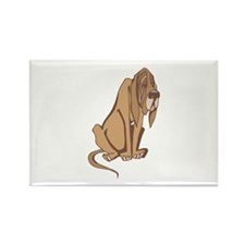 Droopy Bloodhound Rectangle Magnet