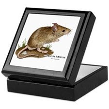 House Mouse Keepsake Box