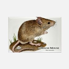House Mouse Rectangle Magnet