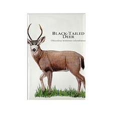 Black-Tailed Deer Rectangle Magnet