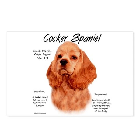 Red Cocker Spaniel Postcards (Package of 8)