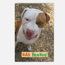 Unique Pit bull rescue central Postcards (Package of 8)