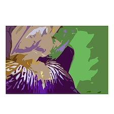 bearded iris Postcards (Package of 8)