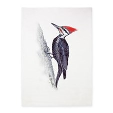 handsome pileated woodpecker 5'x7'Area Rug