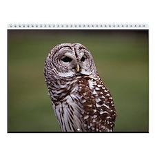 Owl Wall Calendar