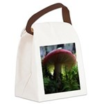 Red Mushroom in Forest Canvas Lunch Bag