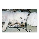LUCKY DOG POSTCARDS (Package of 8)