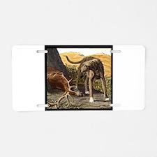 Cute Deerhound Aluminum License Plate