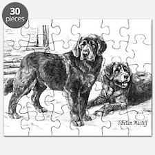 tibetan mastiff dry brush1.png Puzzle