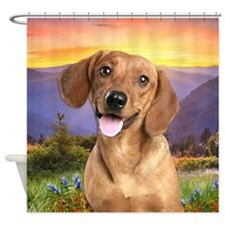 Dachshund Meadow Shower Curtain