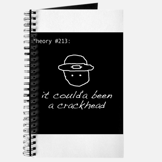 Theory #213 Journal
