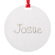 Josue Spark Ornament