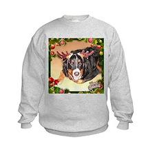 Berner Xmas, frame 1 Sweatshirt